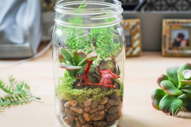 mason-jar-terrarium-diy